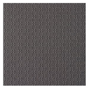 SAMPLE Floor Tiles Courage Fine Grain R12/V4/C Anthracite 20x20cm