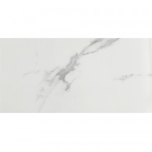 Floor Tiles Aronia Carrara Polished 30x60cm